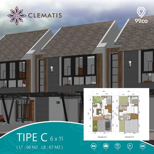 Tipe-C-Clematis
