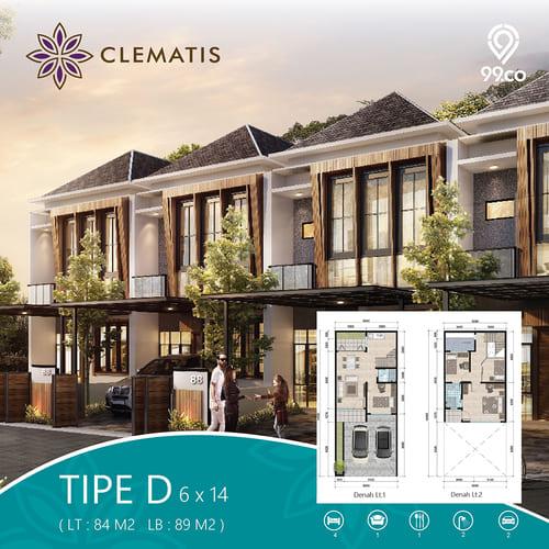 Tipe-D-Clematis